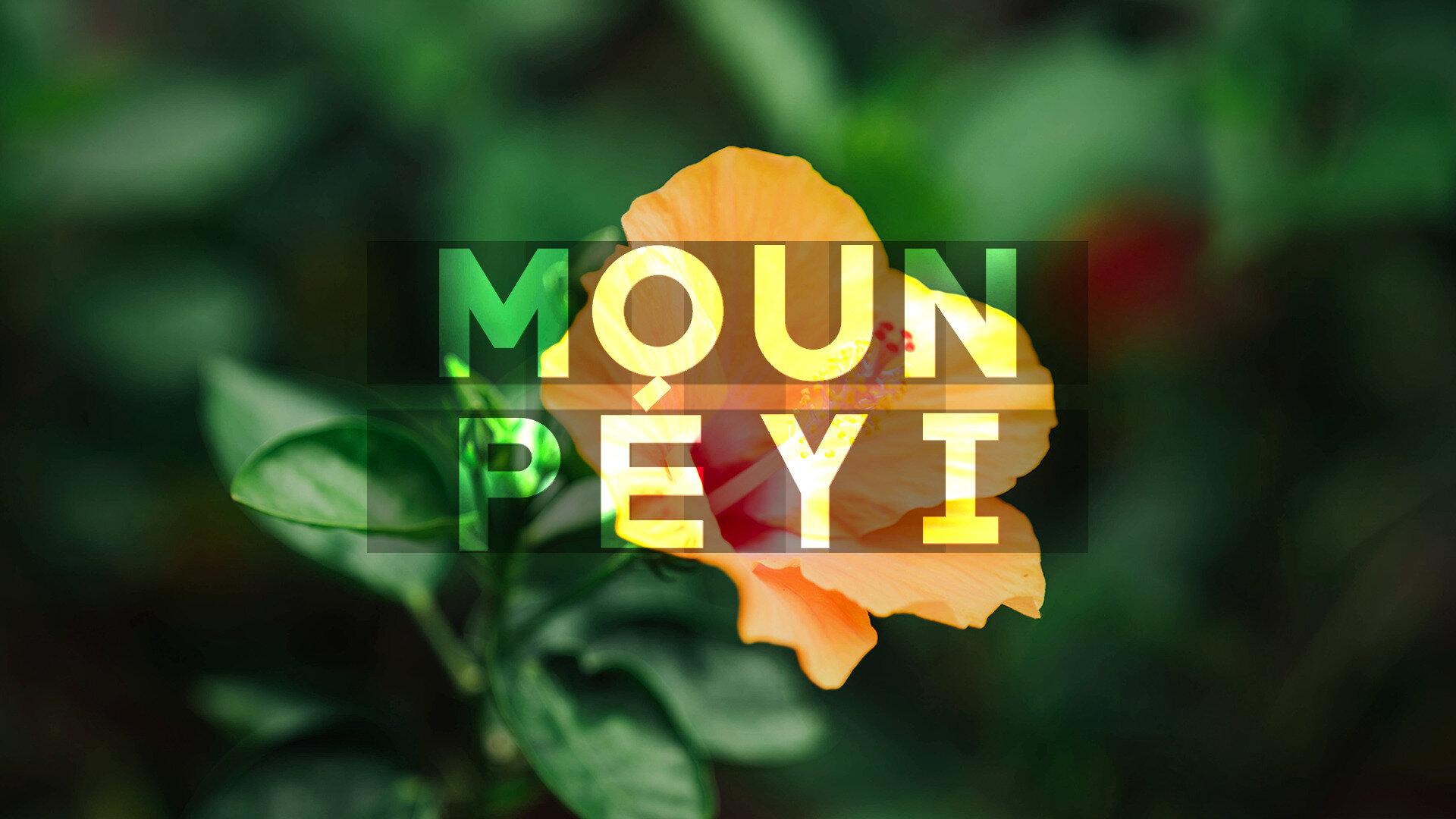 Moun péyi : Synke