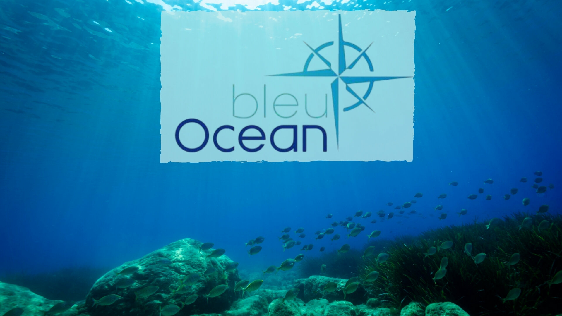 Bleu océan : Moorea - concours pêche et Kayak fond