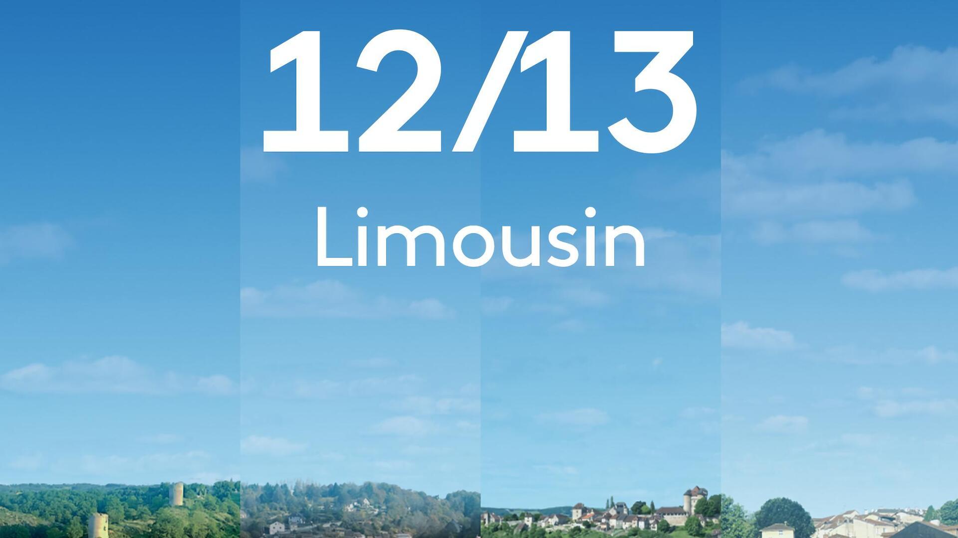 12/13 Limousin