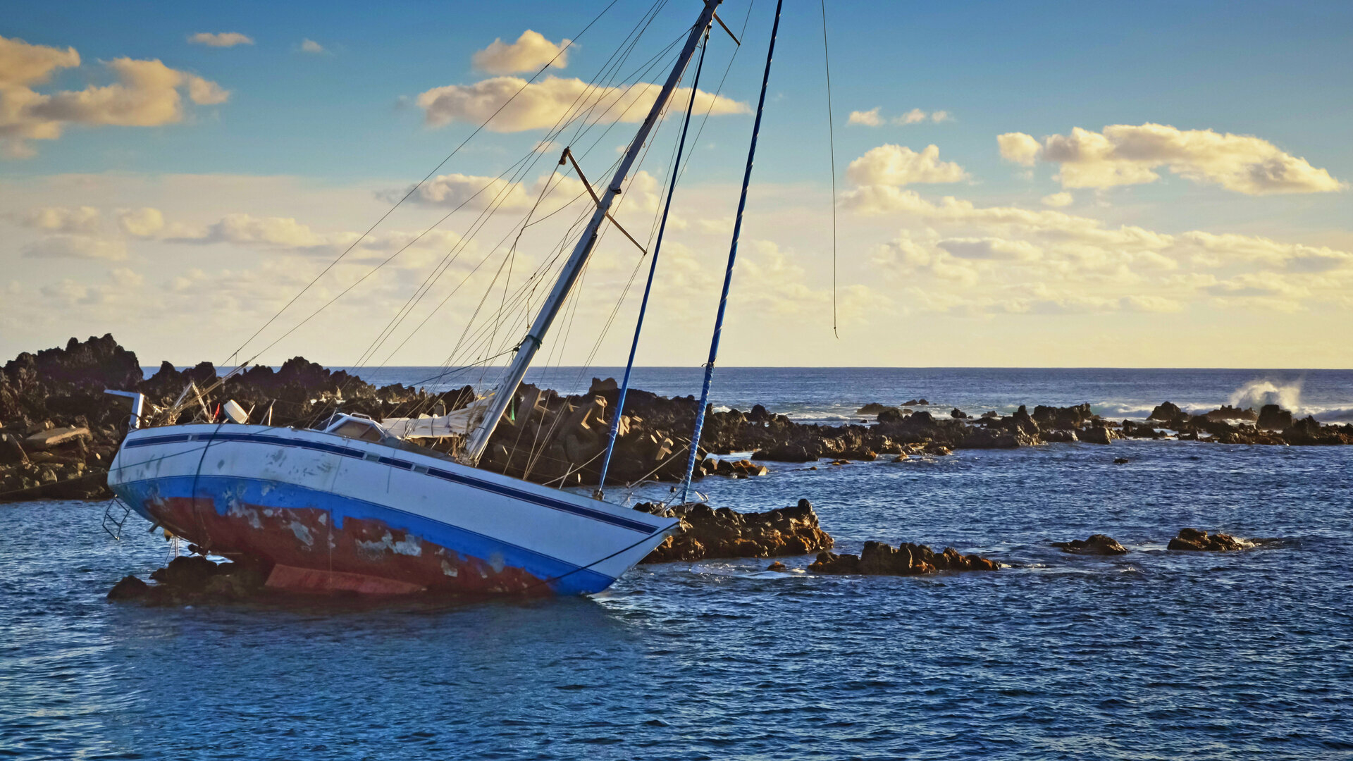 Bleu océan : Thon dans tous ses états