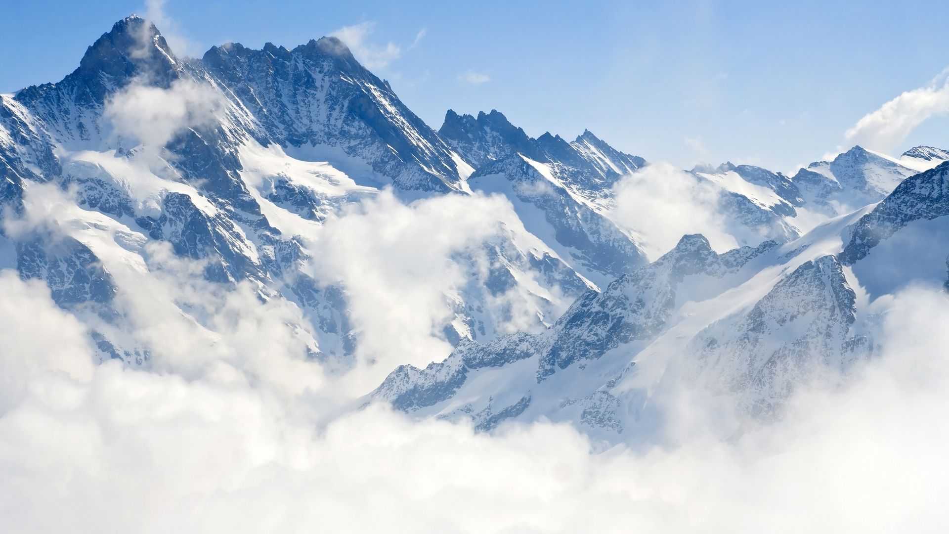 Fora di Strada : Les rois de la montagne